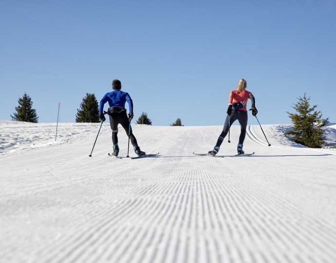 Cross-country skiing: how to choose skate skis?