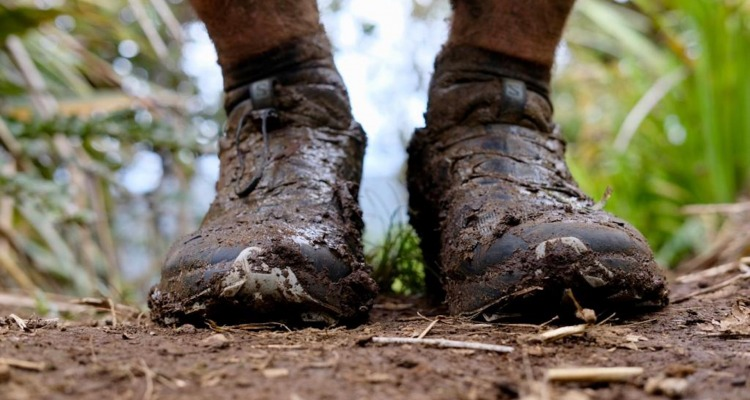 Thru-Hiking New Zealand: Choosing Your Footwear