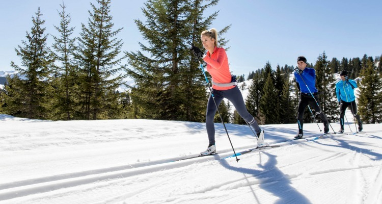 How to choose classic cross-country skis