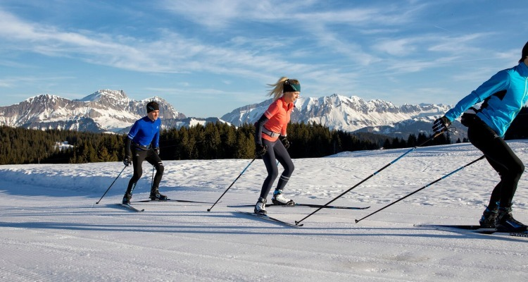 How to choose cross-country ski poles
